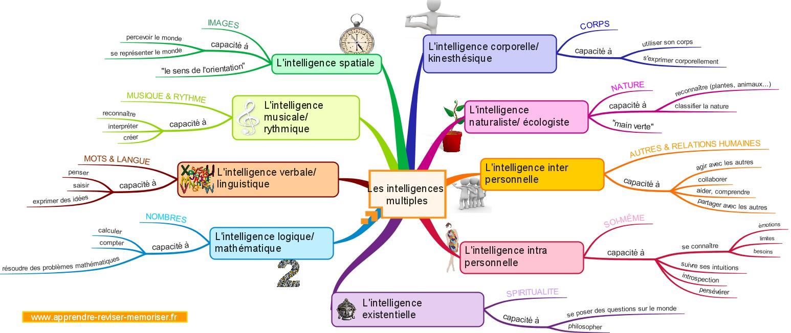 http://apprendre-reviser-memoriser.fr/wp-content/uploads/2016/08/apprendre-avec-les-intelligences-multiples.jpg