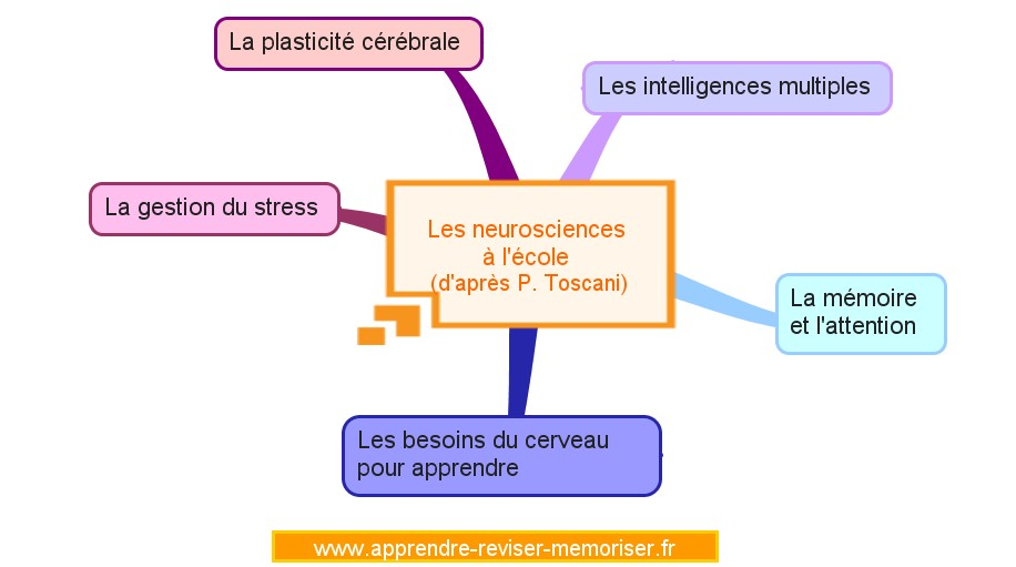 neurosciences-a-lecole