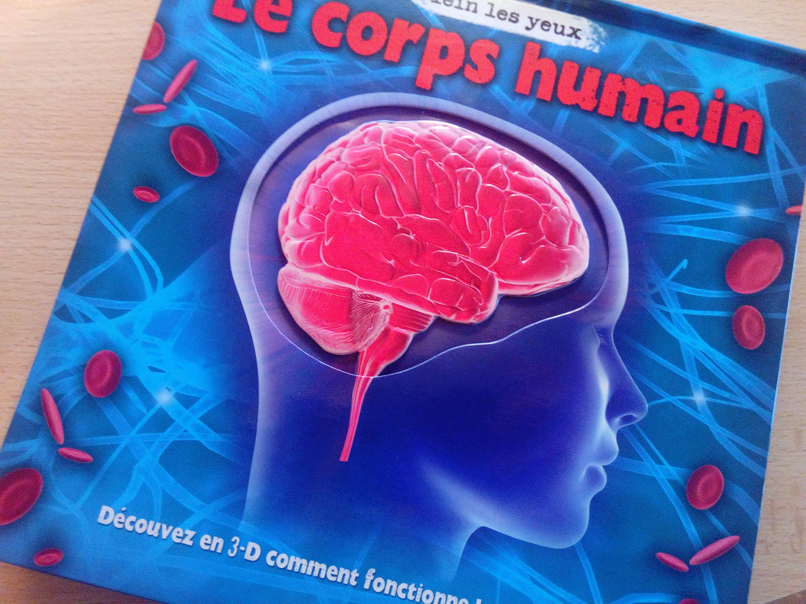 livre corps humain enfants
