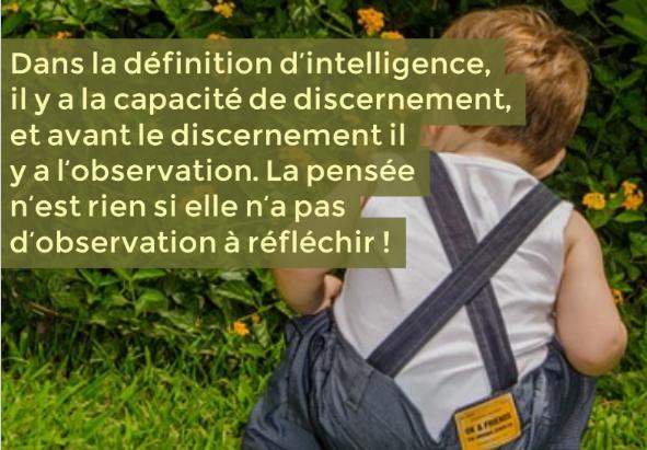 developper-le-sens-de-lobservation-des-enfants