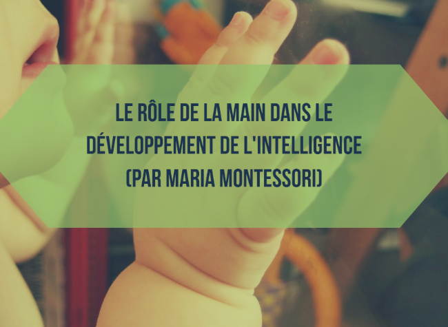 role-main-intelligence-montessori