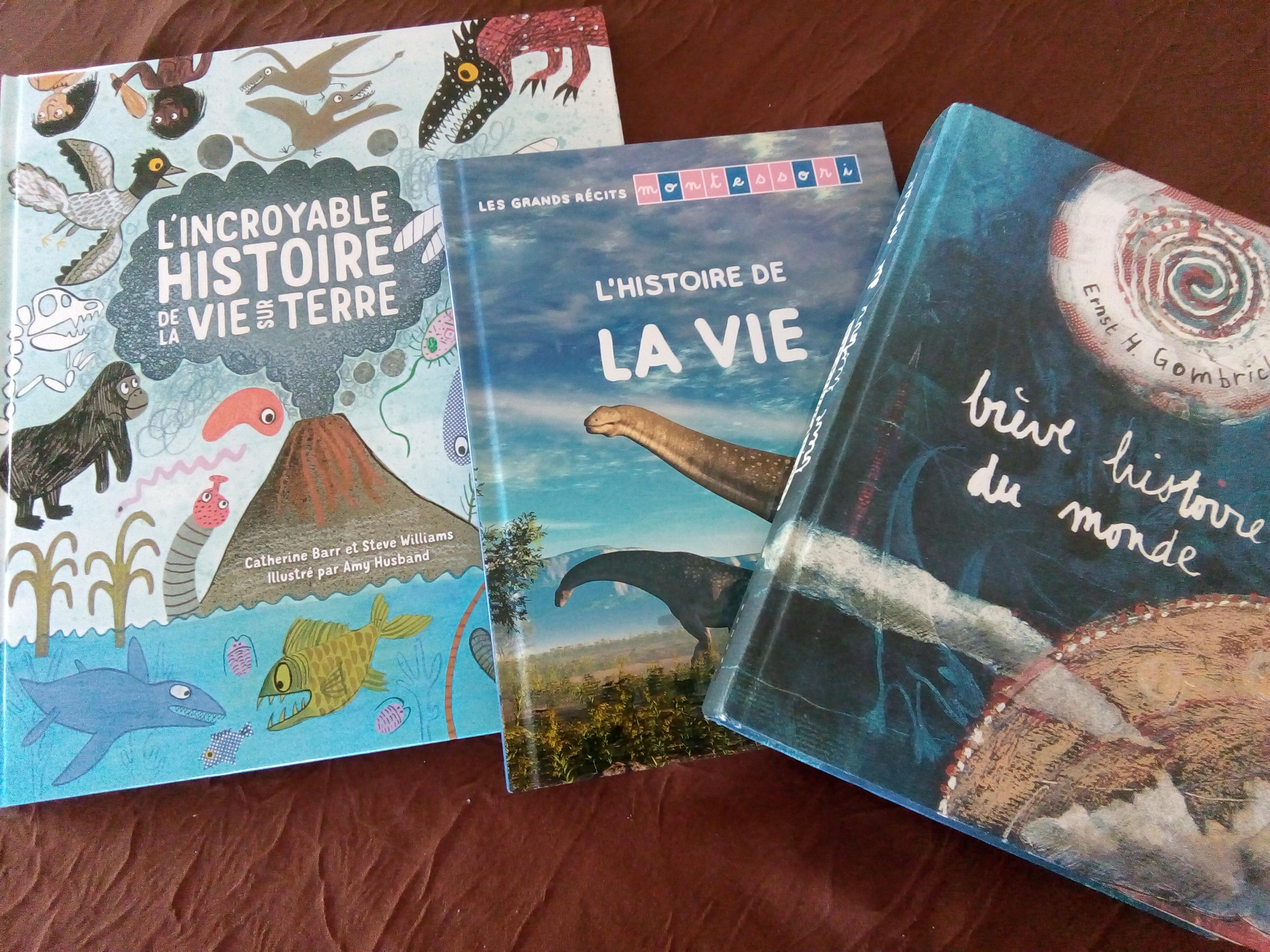 3 livres pour comprendre l 39 histoire de la vie sur terre par tranche d 39 ge. Black Bedroom Furniture Sets. Home Design Ideas